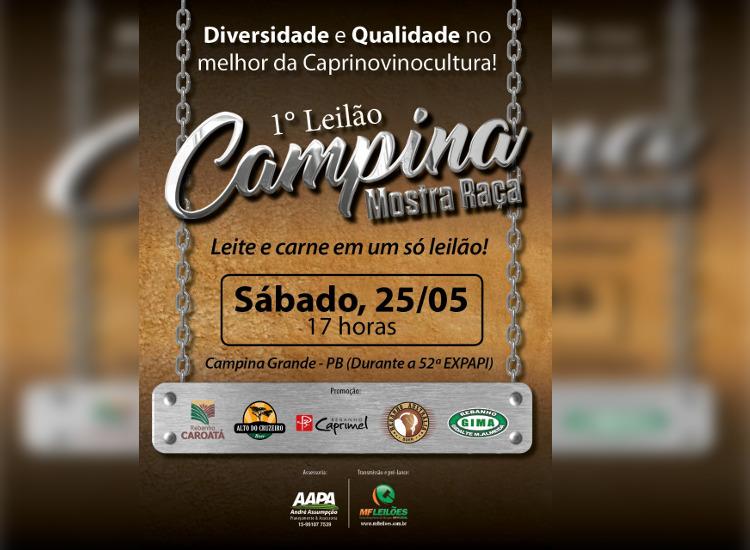 Primeiro Leilão Campina 25-05